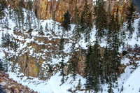20150131 Yellowstone Momouth Springs-11