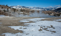 20150131 Yellowstone Momouth Springs-63