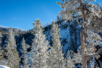 20150130 Yellowstone Canyon-80